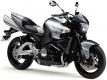 GSX 1300 B-King 2008-2012 (WVCR)