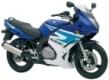 GS 500 F 2004-2008 (WVBK)